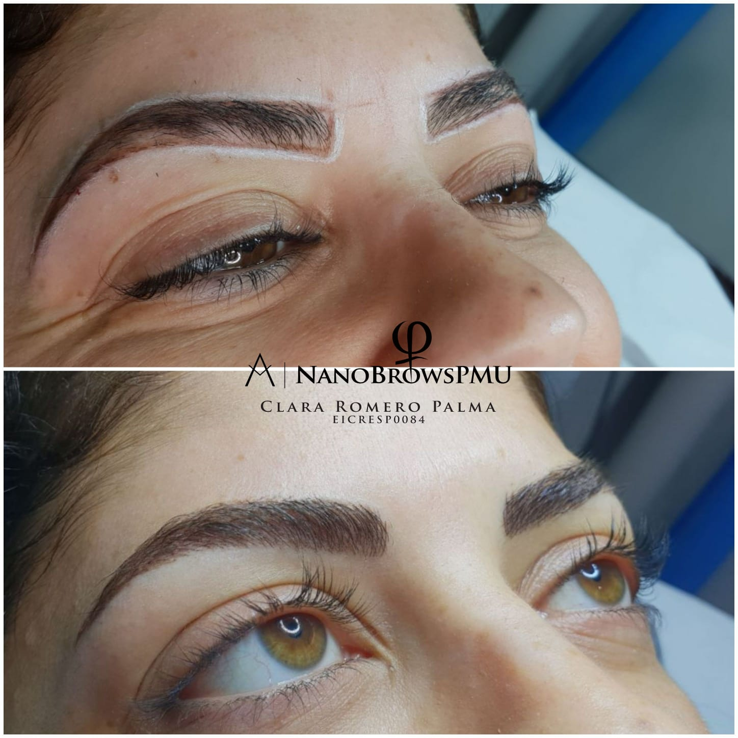 NanoBrows3