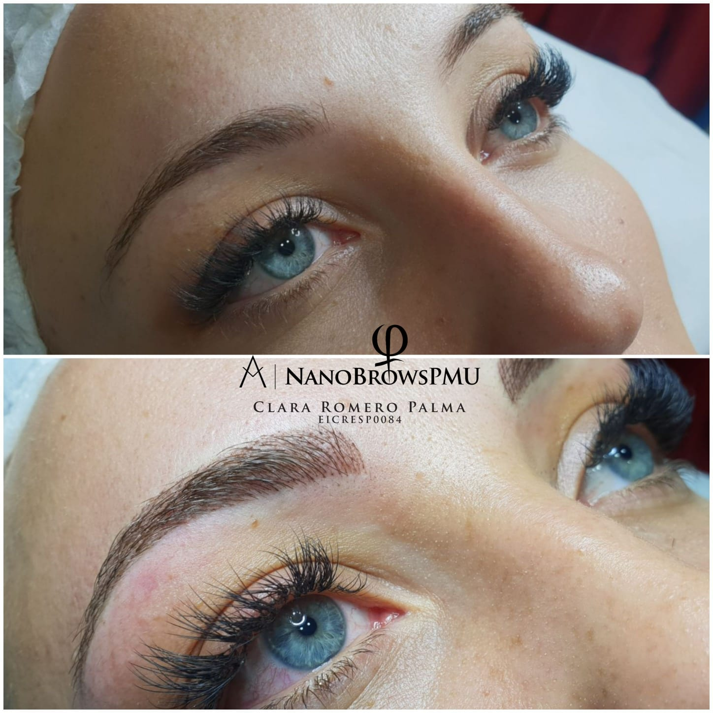 NanoBrows2